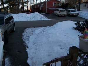 Front yard, the banks ARE getting smaller, but still we have a ton of snow pack on the ground.